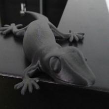 3D Printing-Gecko-Carbon Fiber Filament